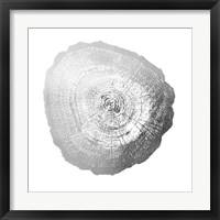 Silver Foil Tree Ring IV - Metallic Foil Framed Print