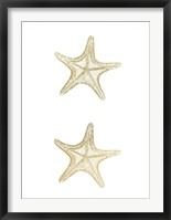 2-Up Gold Foil Starfish II - Metallic Foil Framed Print