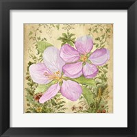 Framed Vintage Apple Blossom I