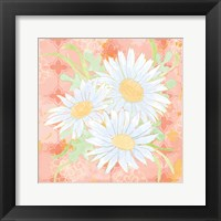 Daisy Patch Coral II Framed Print