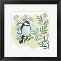 Feathered Friends III Framed Print