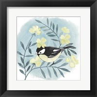 Feathered Friends IV Framed Print