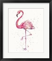 Framed Flamingo's Fancy