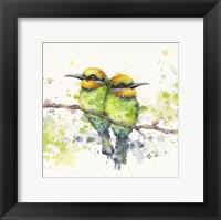Framed Family (Rainbow Bee Eaters)