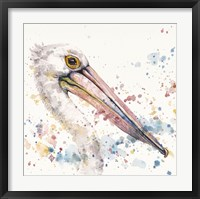 Framed Pelicans About