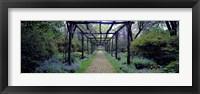 Framed Garden path, Old Westbury Gardens, Long Island