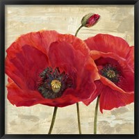 Framed Red Poppies (detail II)