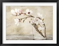 Framed Fiori di Magnolia