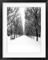 Framed Tuileries Garden under the Snow, Paris