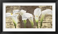 Callas on Gold (mocca variation) Framed Print