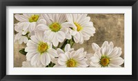 Framed Daisies in the Moonlight