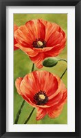 Poppies in the Wind II Framed Print
