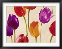 Framed Tulip Funk