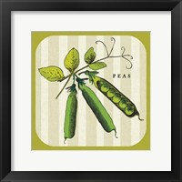 Framed Linen Vegetable IV