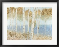 Framed Summer Birches
