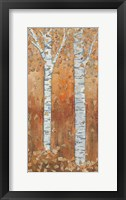 Birch Tryptic II Framed Print