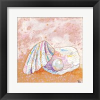 Pearl Seashell Framed Print
