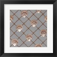 Scallop Shell Net Framed Print