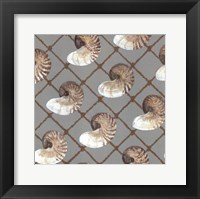 Nautilus Net Framed Print
