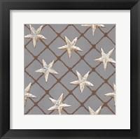 Net Full of Stars Framed Print