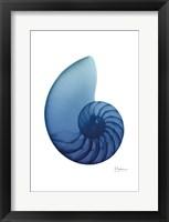 Scenic Water Snail 2 Framed Print