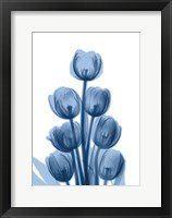 Indigo Spring Tulips Framed Print