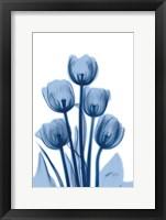 Indigo Spring Tulips 2 Framed Print
