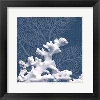 Sea Coral 1 Framed Print