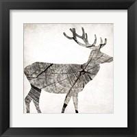 Wood Deer Framed Print