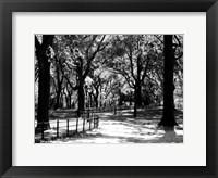 Framed Central Park Walk