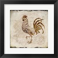 Vintage Rooster Square 2 Framed Print