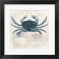 Crab Coast Vision Framed Print