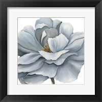 Blue Silken Bloom Framed Print