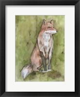 Fantastic Fox Framed Print