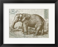 Elegant Safari Elephant 1 Framed Print