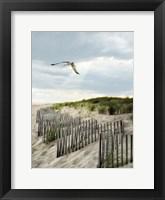 Framed Dawning Seagull and Godbeams