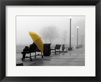 Sitting In The Rain Framed Print