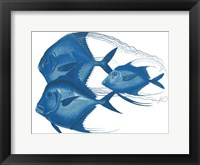 Angels Of The Deep Framed Print