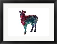 Stripes Of Colors Framed Print