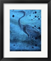 Indigo Pride And Joy Framed Print
