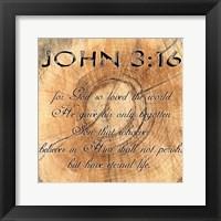 John 3-16 Framed Print