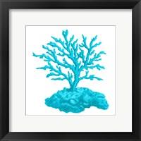 Blue Coral 4 Framed Print