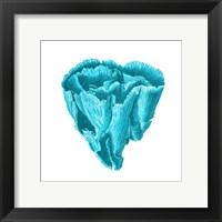 Blue Coral 6 Framed Print