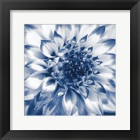 Framed Navy Dahlia 2