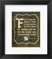 Framed Jeremiah 29:11 For I know the Plans I have for You (White Dove)