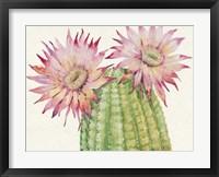 Desert Blossoms II Framed Print