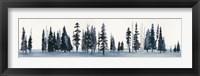Sapphire Grove II Framed Print