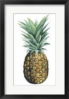 Watercolor Pineapple II Framed Print