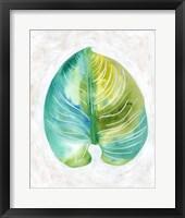 Ocean Side Palms  I Framed Print