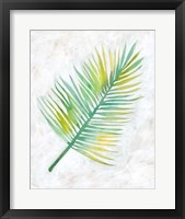 Ocean Side Palms  IV Framed Print
